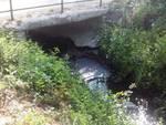 Fogna a cielo aperto, fiume Raio inquinato