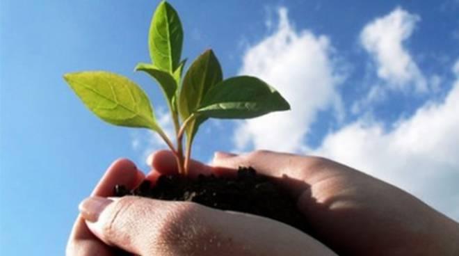 Giornata Mondiale Ambiente, i consigli dell'Asm