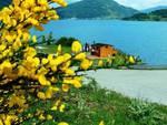 Domenica delle delizie sul lago di Campotosto