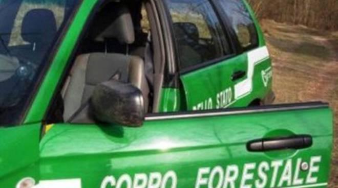 Incendi in Abruzzo, 30 interventi in due giorni