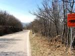 «Strade del Parco usate come piste per velocisti»
