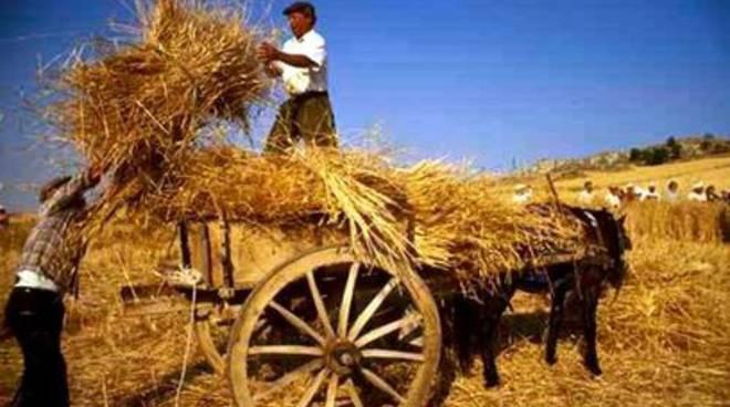 A San Demetrio Ne' Vestini, la quarta 'Festa del grano e del pane'