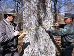Forestale in azione, Pepe: «Di vitale importanza per l'Abruzzo boscoso»