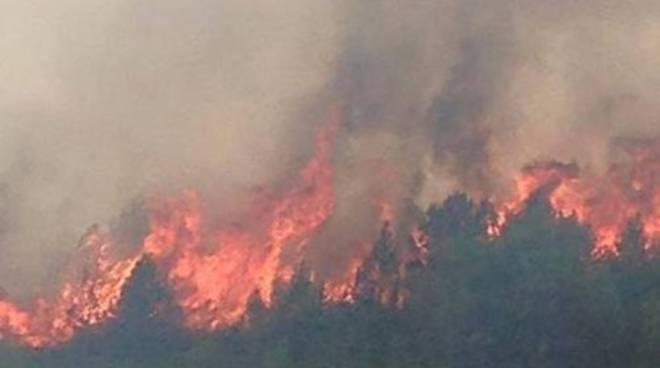 Incendio a Capestrano, canadair in azione