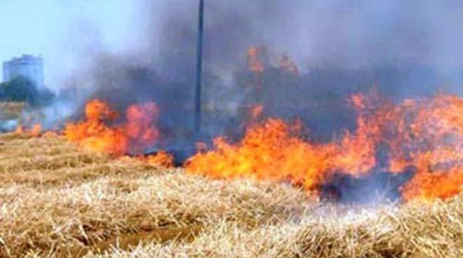 Pescina, 20 ettari di bosco in fumo