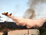Teramo, canile a fuoco: strage evitata per un soffio
