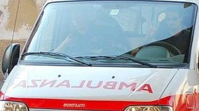 Cade mentre pota albero, 53enne in ospedale