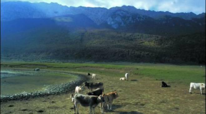Dove abitano le montagne della frontiera