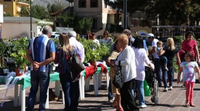 Torna il Borgo Pineta Pepper Festival