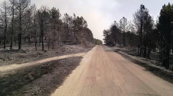 Vasto incendio nel Chietino, rinforzi da L'Aquila