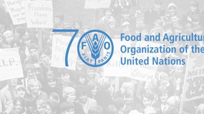 Giornata nazionale alimentazione