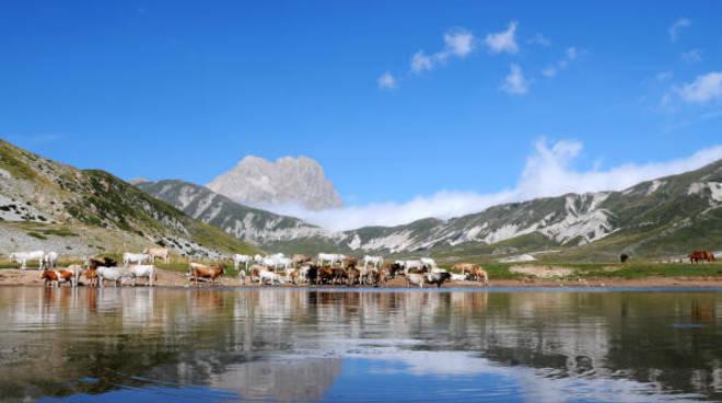 Turismo Abruzzo - Gran Sasso