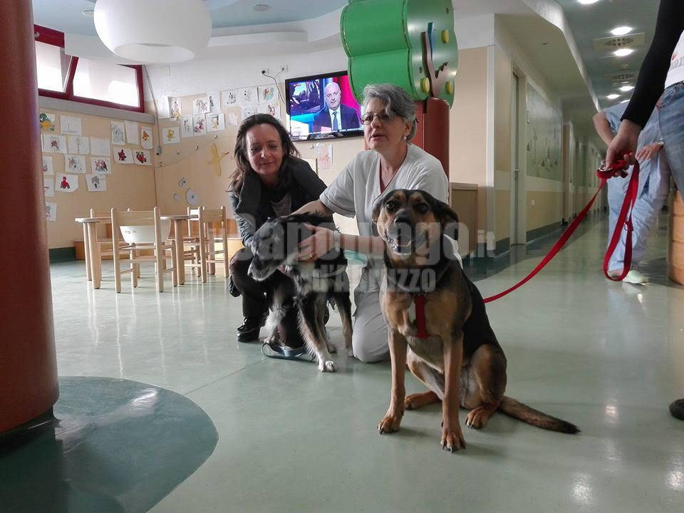 pet therapy ospedale