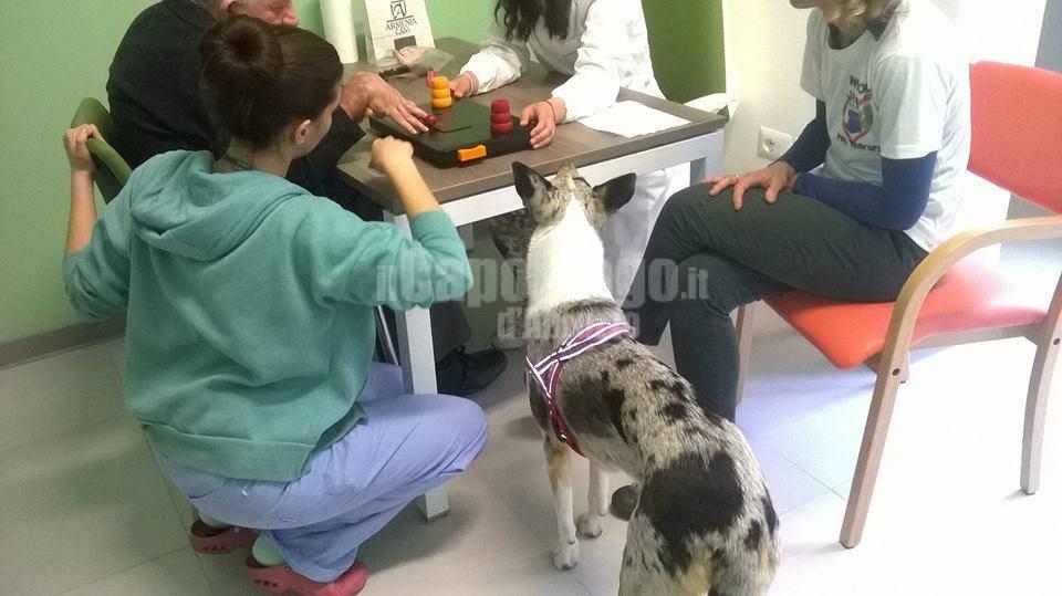 pet therapy e riabilitazione