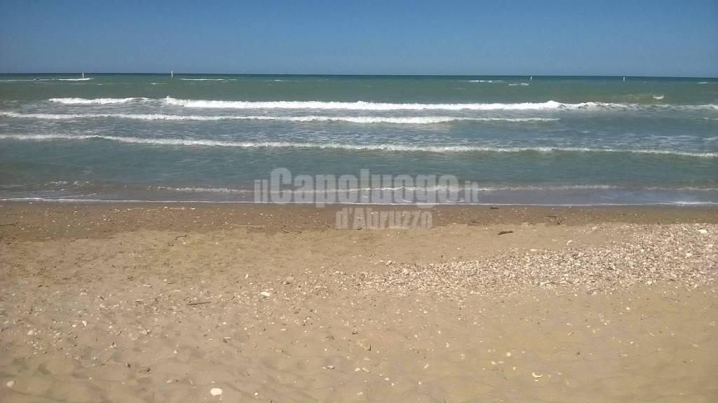 A Silvi unica beach, la spiaggia per cani