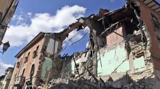foto generiche scavi terremoto amatrice