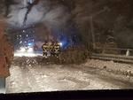 alberi sulla strada dopo nevicata