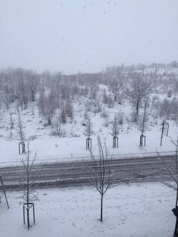 neve bazzano progetto case