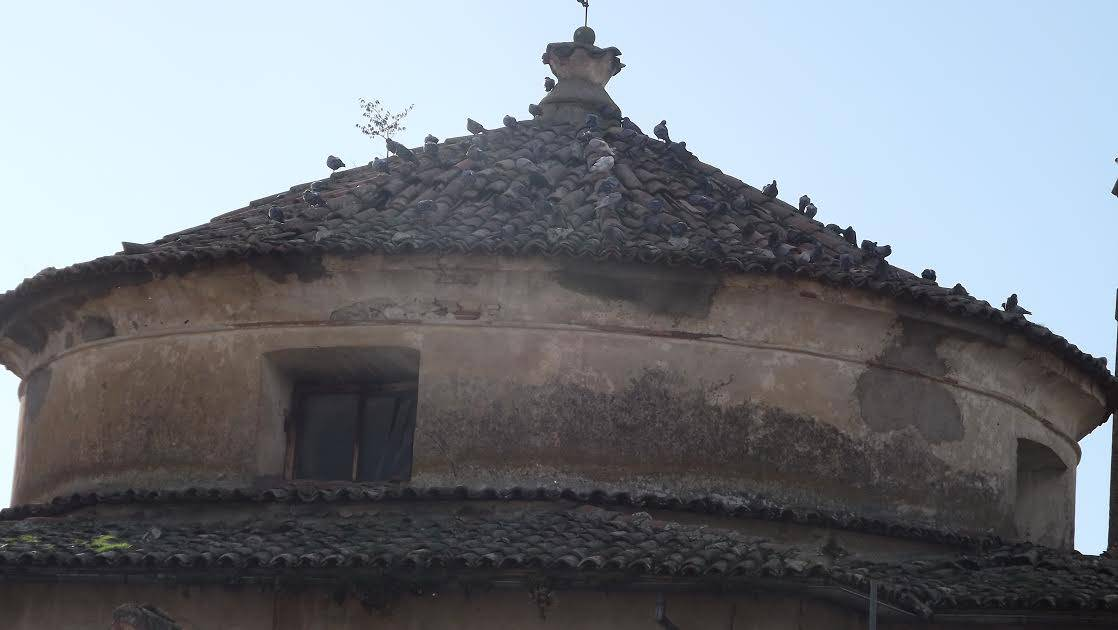 Chiesa SS. Annunziata di San Demetrio: crolli e guano