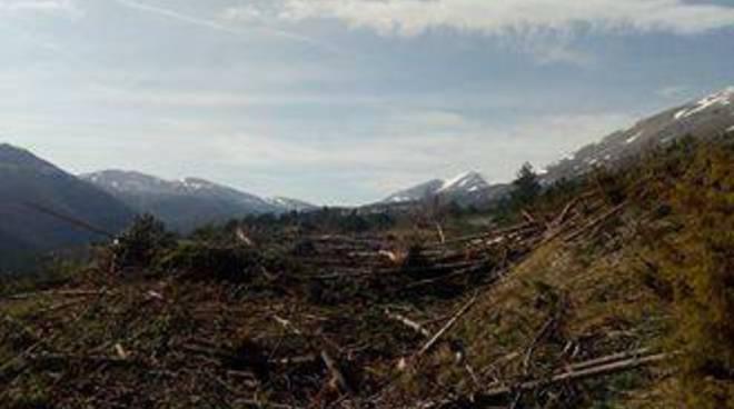 gran sasso detriti e legna