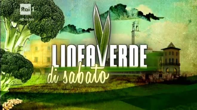 Le eccellenze aquilane in mostra a linea verde il capoluogo for Linea verde favaro