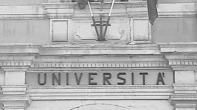 università palazzo carli