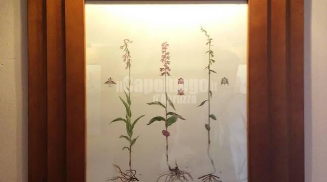 Centro Floristico dell'Appennino
