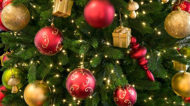 Menu Delle Feste Di Natale.I Menu Delle Feste Il Capoluogo