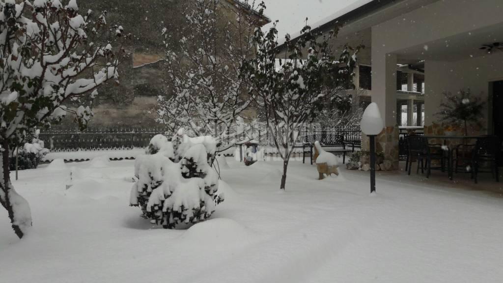 L'Aquila e la neve di Lorella Pace