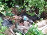 rifiuti pista ciclabile monticchio
