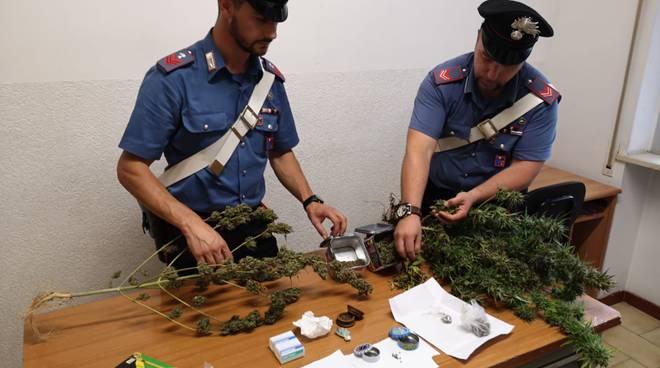 carabinieri marijuana