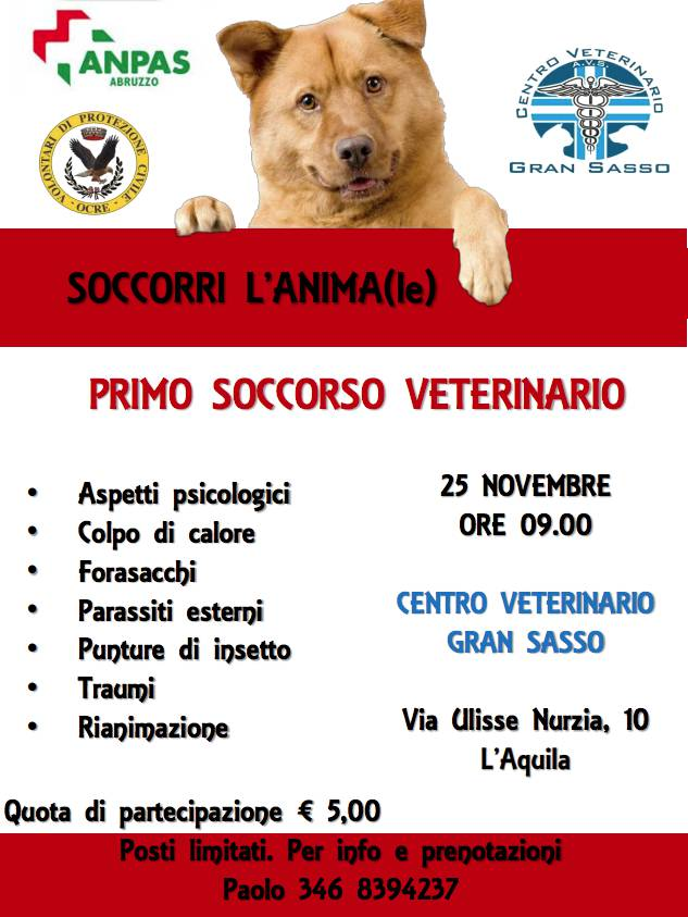 soccorri l'animale