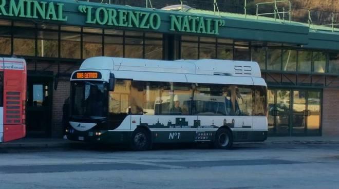 bus gratuito