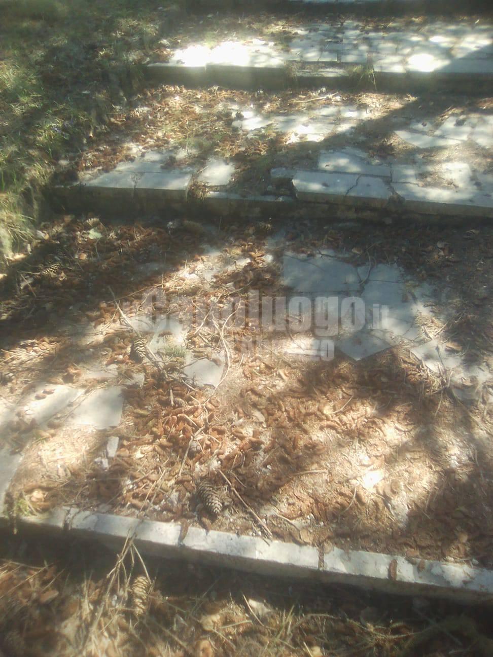cimitero zona D