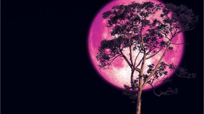 Calendario Luna Piena.Giugno 2019 La Luna Di Fragola Apre Un Mese Con Il Naso All