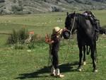 cavallo sophia