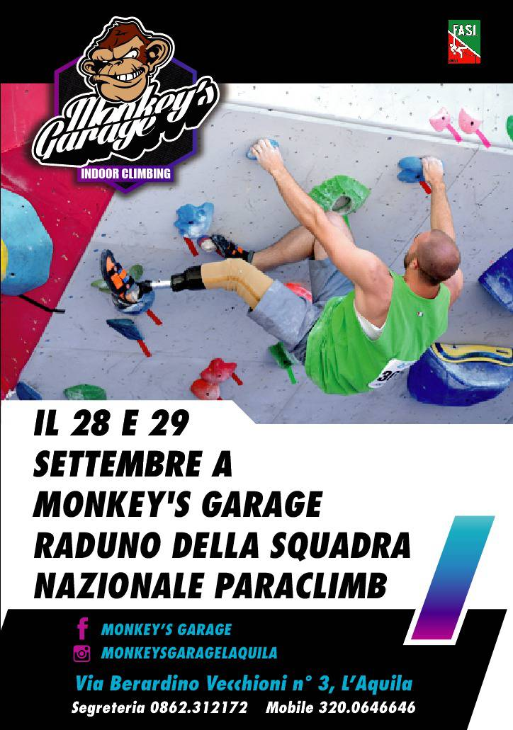 monkey's garage