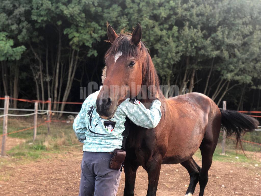 abruzzo a cavallo trekking