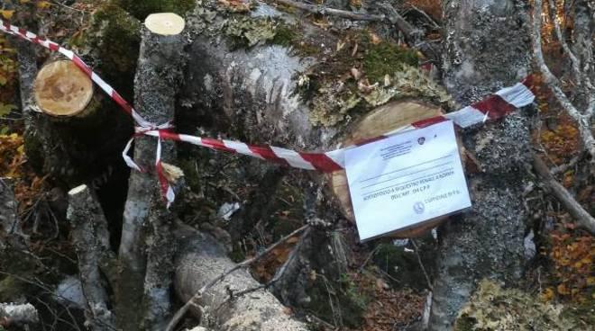 sequestro legna pnalm