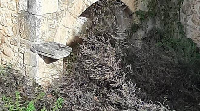 fontanile antico aragno