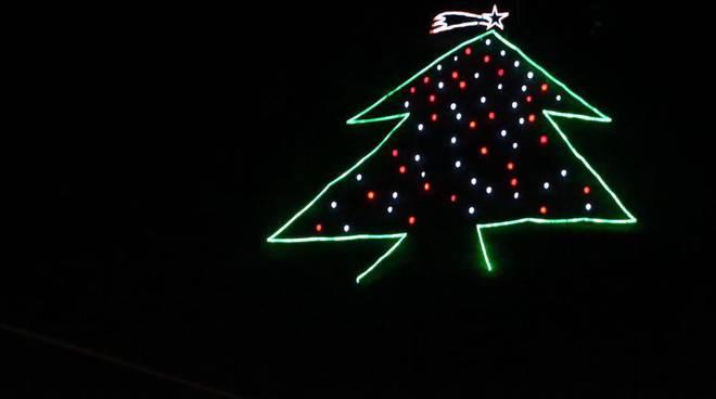 albero cesaproba