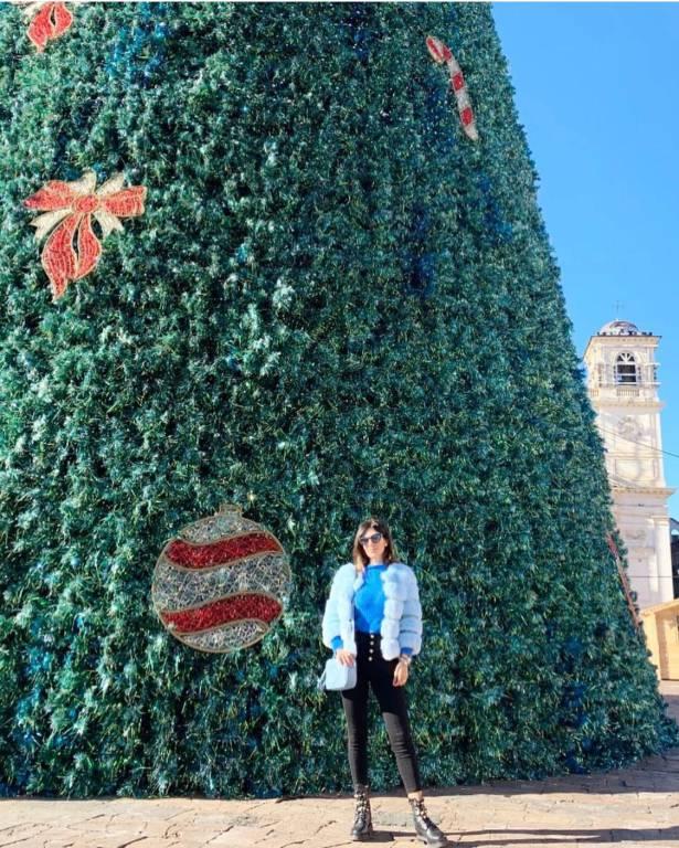 albero in piazza