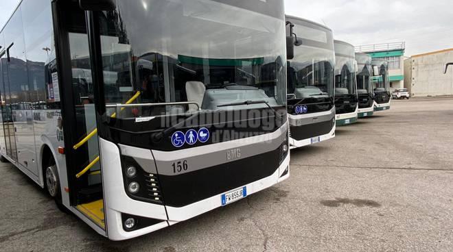 bus ama