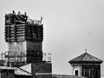 torre castel del monte