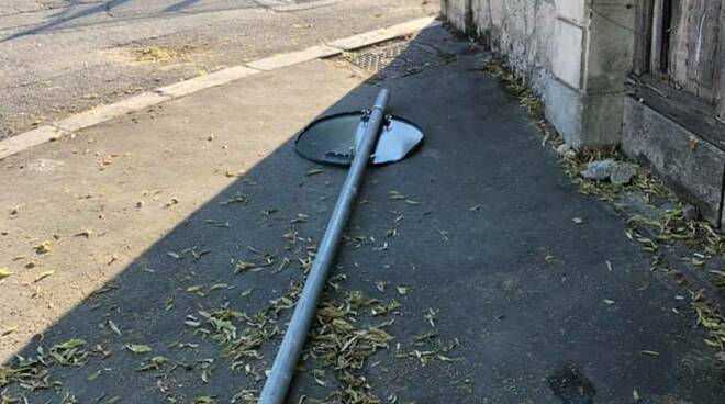 palo caduto