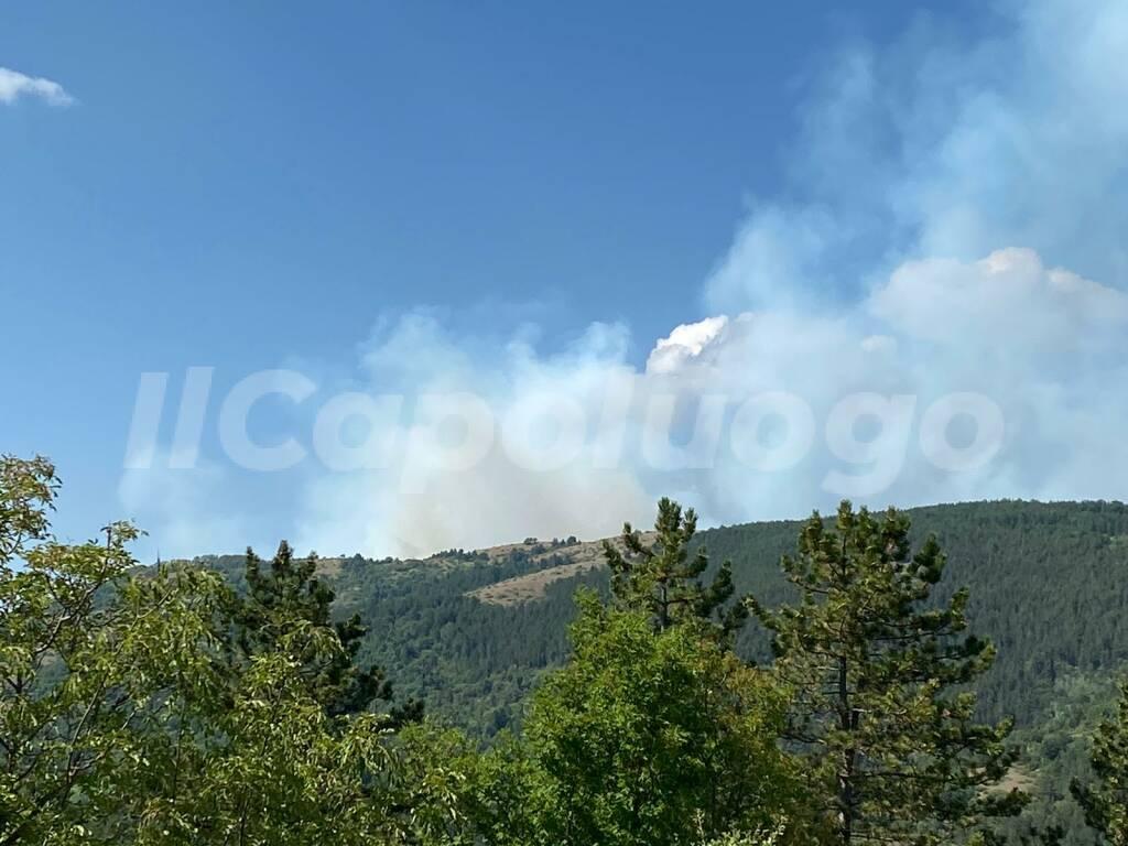 incendio arischia da monte pettino
