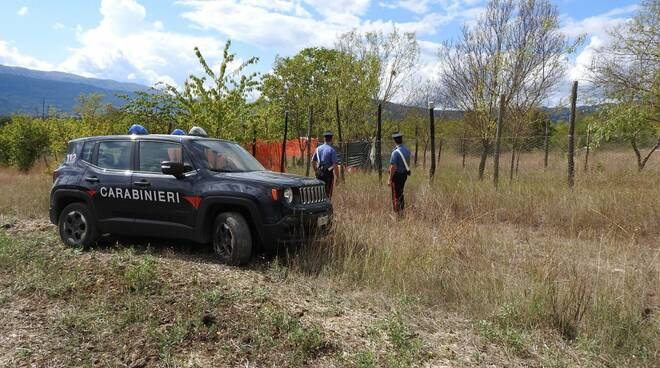 marijuana arresto carabinieri
