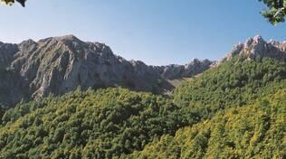 abruzzo regione verde