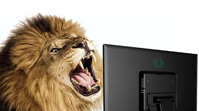 haters leoni da tastiera