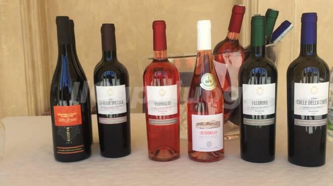 food&rosé selection l'aquila vino rosato